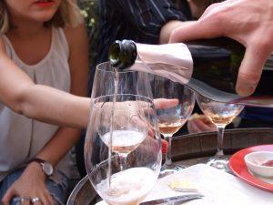 the grape escape wine tours